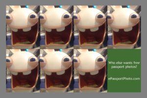 PassportPhotoSheet